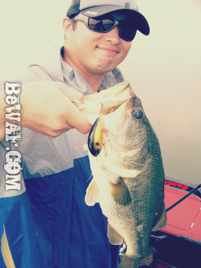 biwako nishinoko ibanaiko bass fishing guide chouka 19