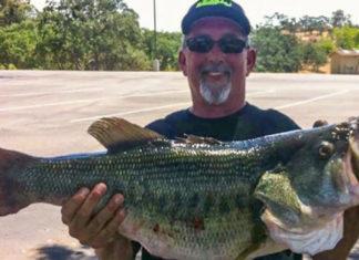 78cm (8160kg)のデカバス釣れる!! (米カリフォルニア)