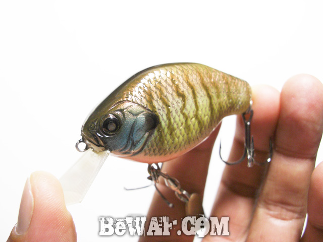 crank bait jisaku bass fishing 16