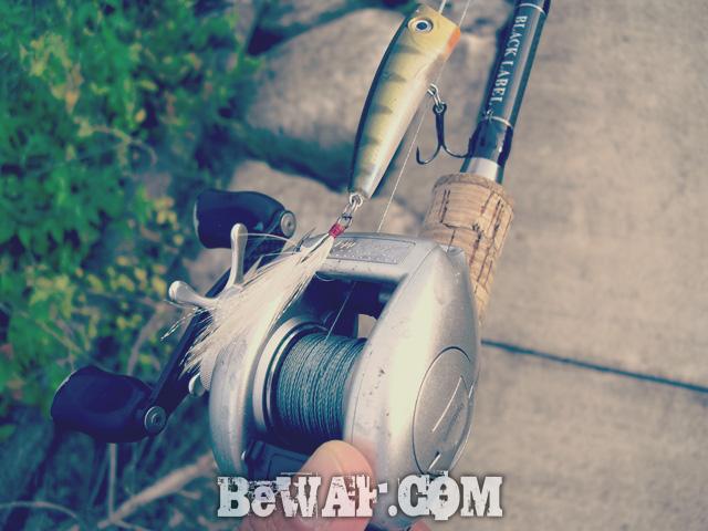 setagawa bass chouka 2015 5