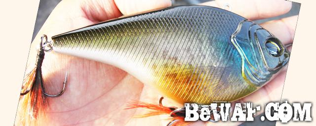 3.biwako bass guide service chouka