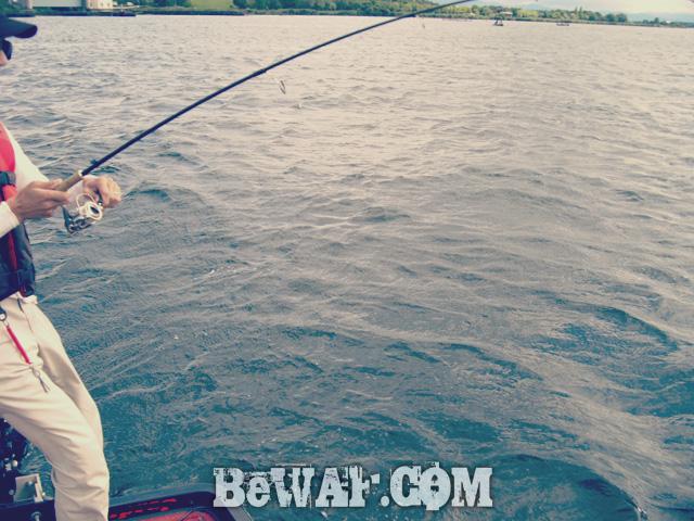 biwako bass fishig guide service 15
