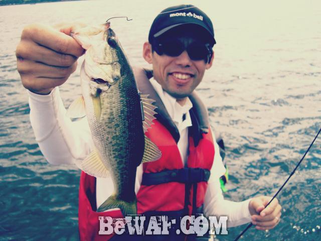 biwako bass fishig guide service 9