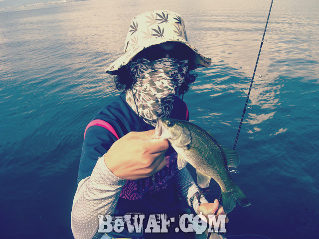 biwako bass fishing guide gekiyasu rental 11