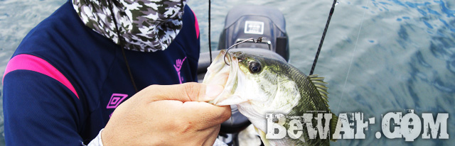 biwako bass fishing guide gekiyasu rental 21