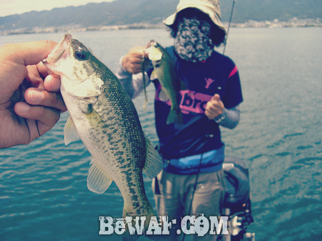 biwako bass fishing guide gekiyasu rental 22