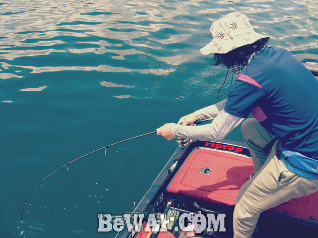 biwako bass fishing guide gekiyasu rental 23