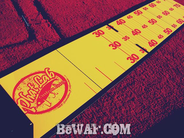 biwako bass punching chouka natu 9