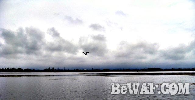 biwako black bass chouka blog shoukai 10