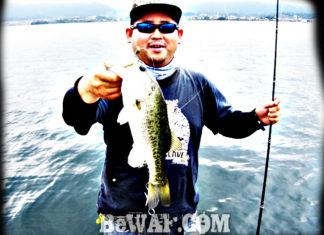 琵琶湖バスフィッシングガイドリポート ~加納様 DAY 1~ 43cm