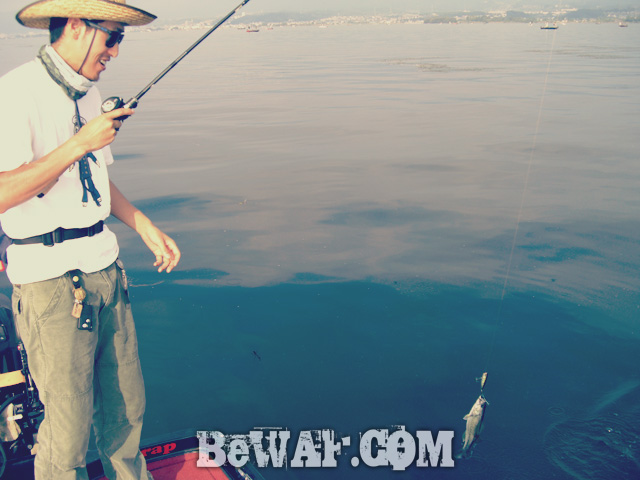 biwako black bass evergreen guide daiwa zillion 4