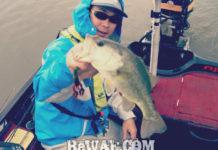 琵琶湖バスフィッシングガイドリポート ~吉武様~ 38cm 11