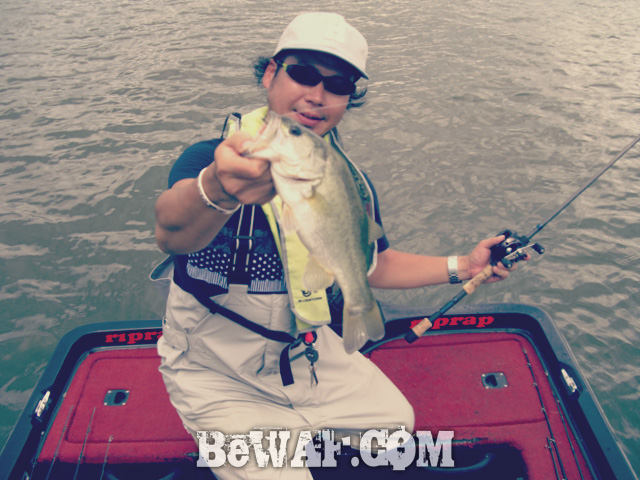 biwako black bass jackall deps guide 13