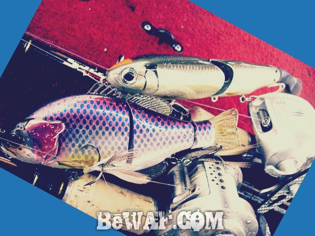 biwako black bass jackall deps guide 3