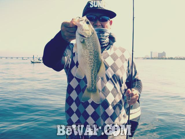 biwako black bass jackall deps guide 8