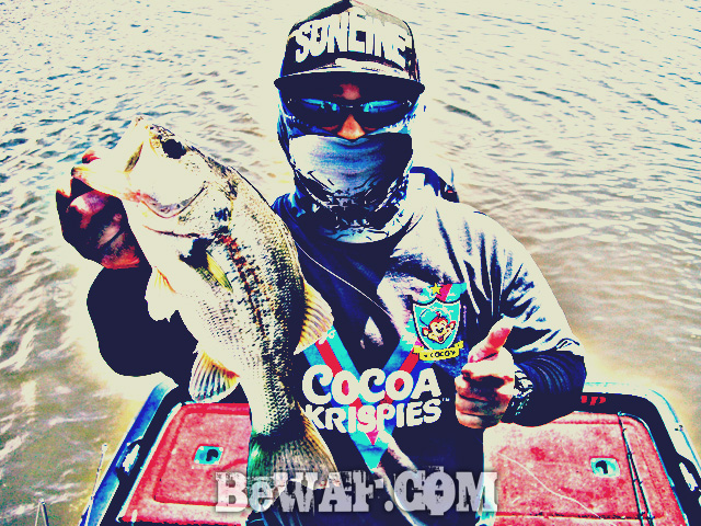biwako black bass jackall deps guide13