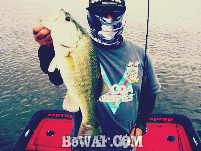 biwako black bass jackall deps guide15