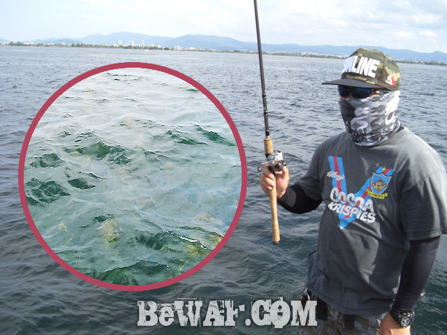 biwako black bass jackall deps guide17