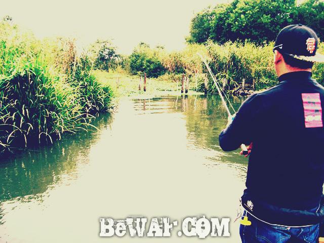 WFG biwako bass fishing guide 10