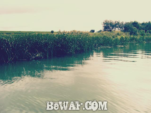 WFG biwako bass fishing guide 15