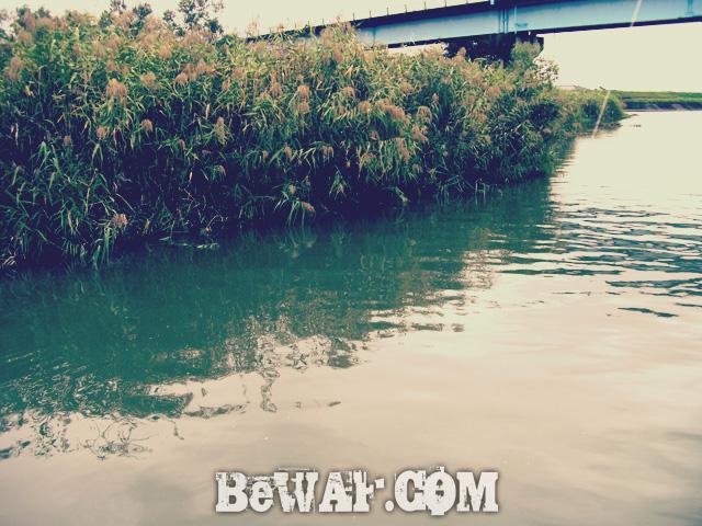 WFG biwako bass fishing guide 16