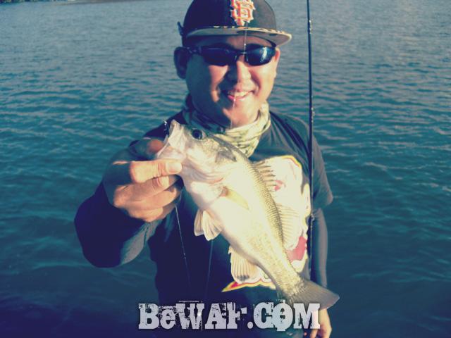 WFG biwako bass fishing guide 18