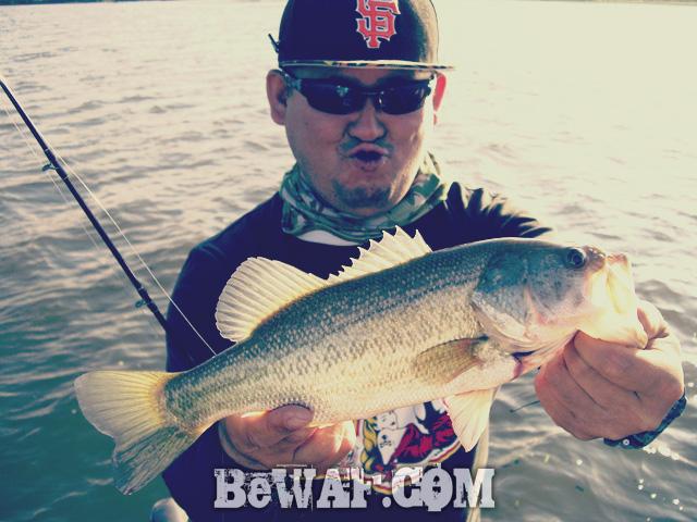 WFG biwako bass fishing guide 20