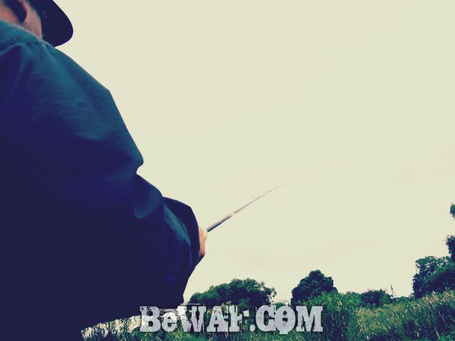 WFG biwako bass fishing guide 24