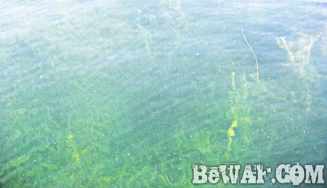 WFG biwako bass fishing guide 7