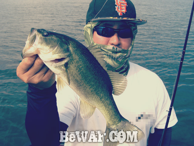 biwako bass fishing guide blog shousai 22