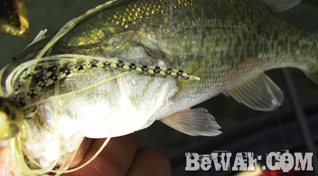 biwako bass guide chouka jackall lure 11
