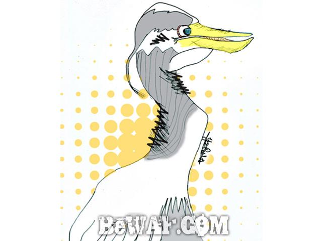 biwako-bass-guide-chouka-jackall-lure-1963