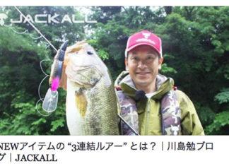 ダイビング・マイキー(ポニーテール)の詳細!! (川島勉)