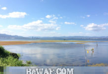 今日の琵琶湖 (9月11日) (by ビワエフ) 1