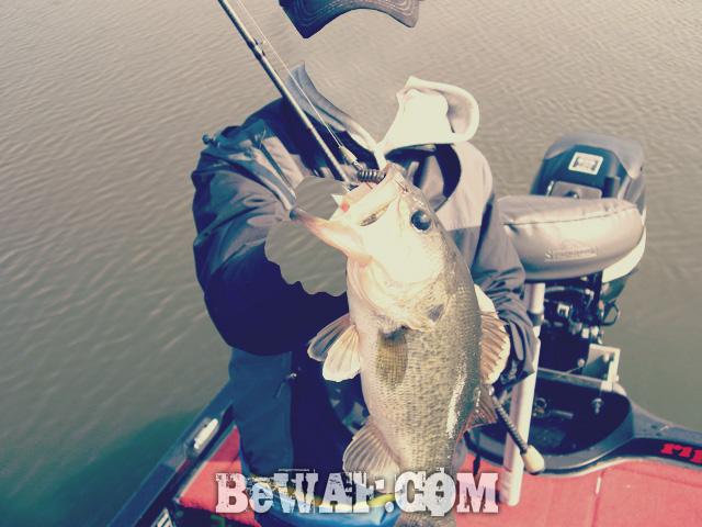 10-biwako-bass-fishing-guide-chouka-88