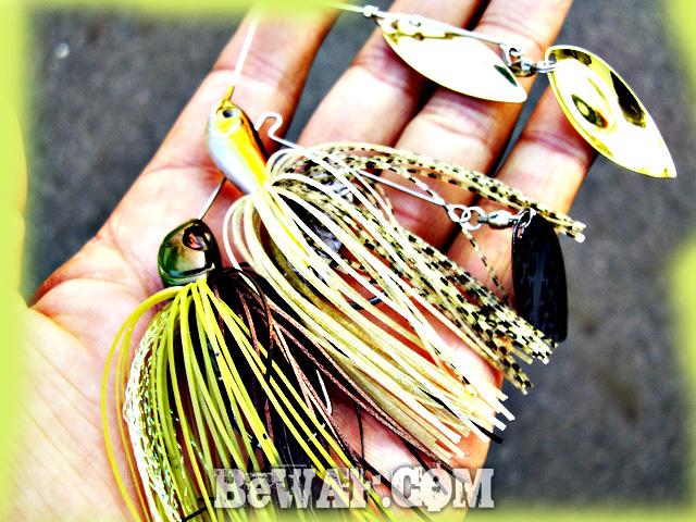 2 biwako bass fishing guide chouka