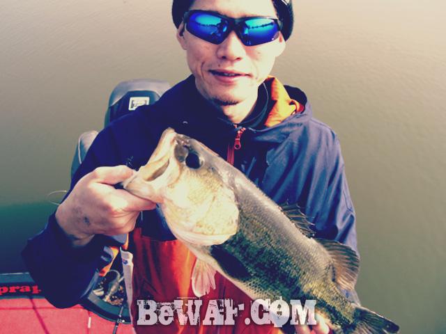 7 biwako teikakaku guide chouka shousai