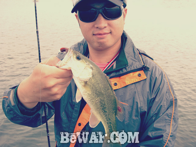 biwako bass chouka shousai 22