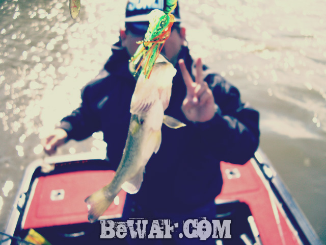 biwako bass guide shousai 12