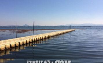 今日の琵琶湖 (by ビワエフ) 10月19日 1