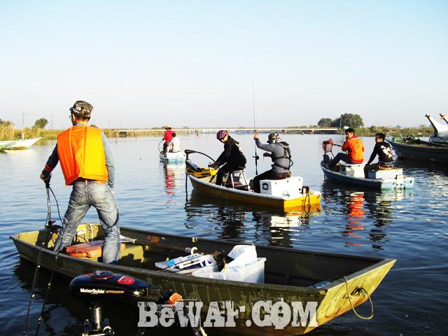 ibanaiko bass fishing chouka seven parms 4