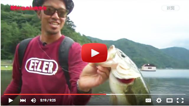 nomura-shunsuke-blog-guide