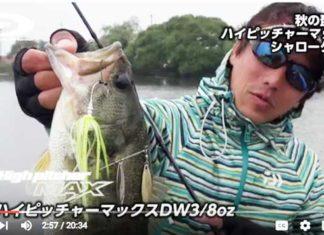 秋琵琶湖をスピナーベイトで攻略!! (三宅貴浩)