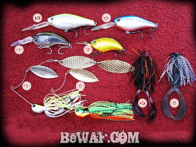 13 biwako bass guide chouka shousai