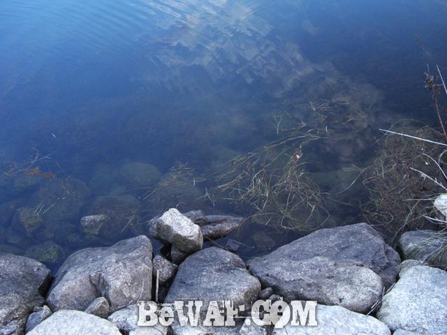 8 setagawa bass chouka shousai