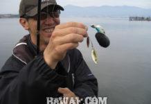 琵琶湖バスフィッシングガイドリポート ~上杉様~ 00cm 20