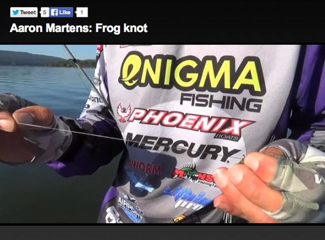 aaron-martins-frog-knot