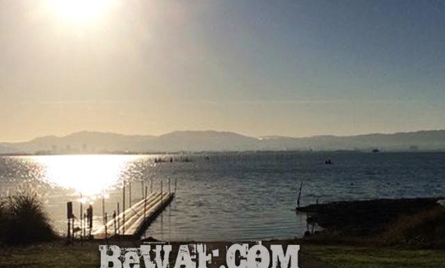 今日の琵琶湖 (by ビワエフ) 11月16日 1