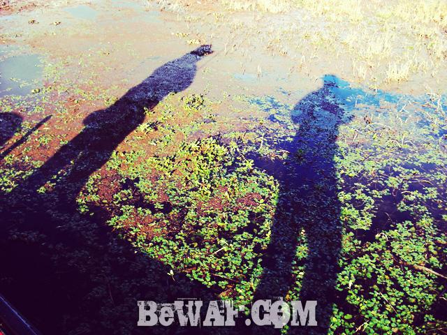 biwako bass fishing jackall deps chouka 10