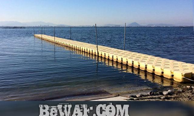今日の琵琶湖 (by ビワエフ) 12月2日 1